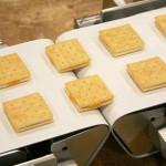 Конвейерные ленты для хлебопроизводства